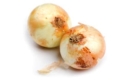 Onion close up Royalty Free Stock Photography