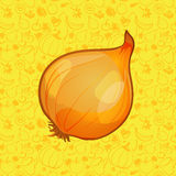 Onion on color background. vector illustration Stock Image