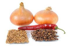 Onion with condiment Royalty Free Stock Photography