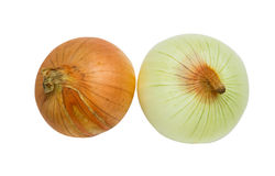 Onion for cooking on white isolate background winth clipping pat Stock Images