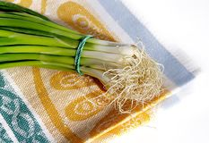 Onion on cotton napkin Stock Photography