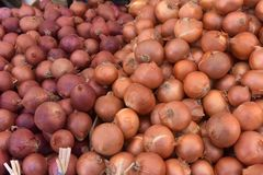 Onion on the counter. Background Stock Images