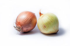 Onion Stock Images