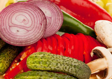 Onion cucumber pepper mushroom. A group of vegetables : onion, peppers, small cucumbers, mushrooms Royalty Free Stock Images