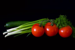 Onion, cucumber and tomatoes. Composition of fresh vegetables: green onion, cucumber and tomato on a branch three Stock Photography