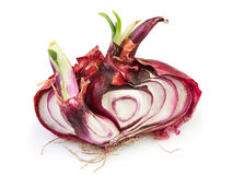 Onion cut Royalty Free Stock Image