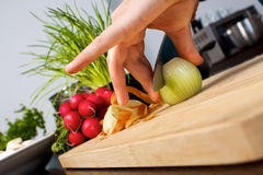 Onion cutting board. Woman slices an onion on a cutting board Royalty Free Stock Images