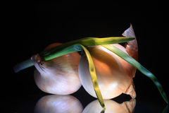 Onion on dark Royalty Free Stock Photos