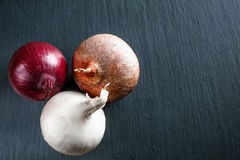 Onion on dark gray stone surface. With copy space Royalty Free Stock Photo