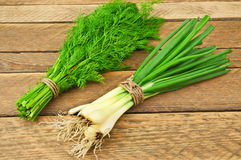 Onion and dill Stock Photo