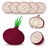 Onion drawing consisting of tag Stock Photography
