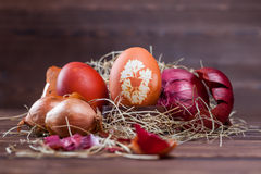 Onion dyed easter eggs. Natural easter egg dyeing orange brown with onion Royalty Free Stock Image