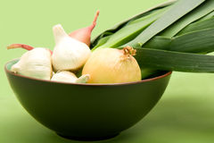 Onion family in Bowl Stock Images