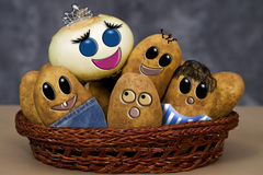 Onion Family (Potatoes) Stock Images