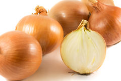 Onion. Fresh onion bulbs isolated on a white background stock images