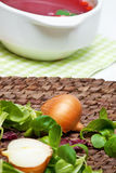 Onion and fresh herbs Stock Images