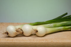 Onion. Fresh young onion on cutting board royalty free stock photo
