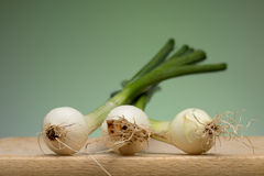 Onion. Fresh young onion on cutting board royalty free stock photography