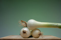 Onion. Fresh young onion on cutting board royalty free stock photos