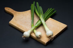 Onion. Fresh young onion on cutting board stock photos