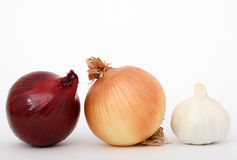 Onion and garlic. Onions and garlic isolated on white, macro close up with copy-space, copy space Stock Photo