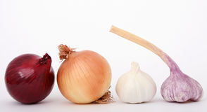 Onion and garlic. Onions and garlic isolated on white, macro close up with copy-space, copy space Royalty Free Stock Photo