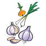Onion and Garlic Stock Photos