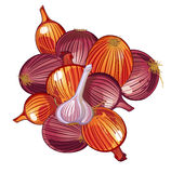 Onion and garlic Stock Photo