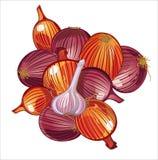 Onion and garlic. Harvest of vegetables, onion, garlic, graphic illustration stock illustration