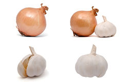 Onion and garlic. Set of four images of onion and garlic. each image is 8 megapixels Stock Images