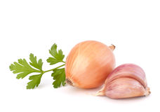Onion and garlic clove Stock Photos