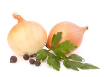 Onion and garlic clove Royalty Free Stock Photo