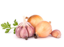 Onion and garlic clove. Isolated on white background stock photo