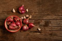 Onion and garlic in the cup. Onion and garlic in the cup on wooden floor Stock Images