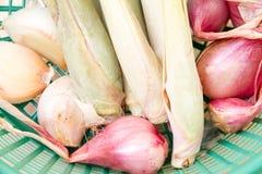 Onion, garlic, lemon grass in a basket Stock Photography