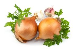 Onion and garlic with parsley. Macro view of onion, garlic and parsley isolated on white background Royalty Free Stock Photography