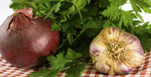 Onion Garlic and Parsley on a Check Cloth. Onion garlic and parsley close up displayed on a red and white check cloth Stock Image