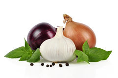 Onion, garlic, pepper Stock Images