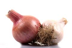 Onion and garlic pods Stock Image