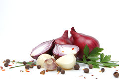 Onion with garlic and spices Royalty Free Stock Images