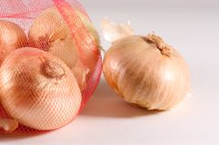 Onion Group Stock Images