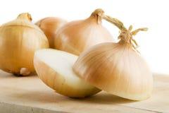 Onion Group stock photos