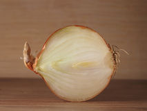 Onion. A half of an onion in a section Stock Photos