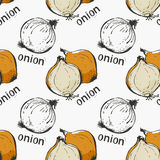 Onion hand draw pattern Royalty Free Stock Images