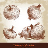 Onion hand drawn set. Herbs and spices vector illustration Royalty Free Stock Photos