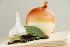 Onion and herbs Stock Photos