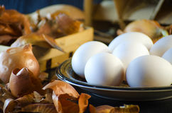 Onion husks and eggs Royalty Free Stock Images