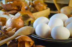 Onion husks and eggs Stock Image