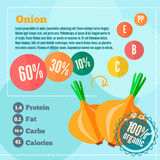 Onion infographics and vitamins in a flat style. Vector illustration. EPS 10 Royalty Free Stock Image