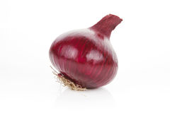 Onion isolated. Stock Photo